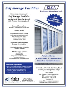 Self Storage Flyer